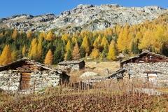 Alpe_roggione